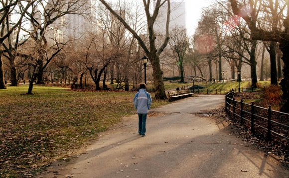 A New York City Parks